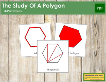The Study of a Polygon 3-Part Cards