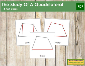 The Study of a Quadrilateral 3-Part Cards