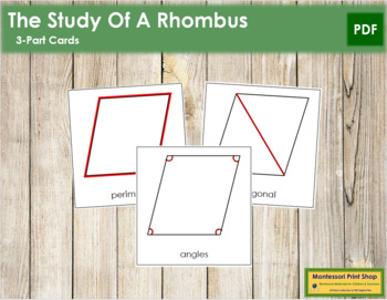 The Study of a Rhombus 3-Part Cards