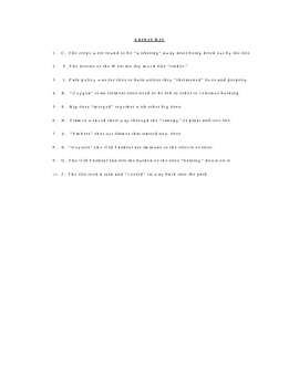 The Summer of Fire Vocabulary Quiz Worksheet