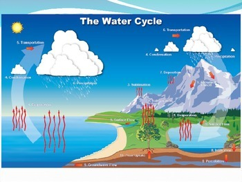 The Sun and the Water Cycle