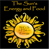 The Sun's Energy and Food: NGS 5-PS3-1 Energy