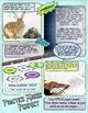 Super Hero Reading Strategy Anchor Chart (Fluency)- Comic