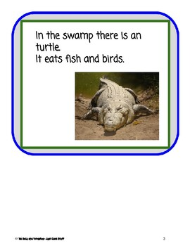 The Swamp- Informational Text (level 3-4)