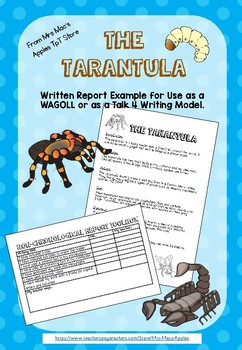 The Tarantula - Non-chronological report sample