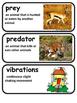 ReadyGen The Tarantula Scientist  Vocabulary Cards 4th grade Unit 1 Module A