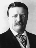 The Theodore Roosevelt Song