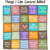 The Things I Can Control BINGO Poster Fun Freebie