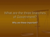 The Three Branches of US Government
