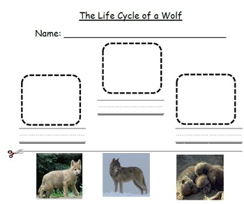 The Three Little Pigs & Wolves Unit- CCSS Aligned