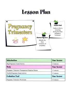 The Three Trimesters Of Pregnancy Lesson