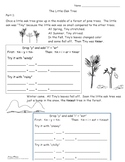"""The Tiny Oak - A Lesson in """"y to i"""" and CVC rules"""