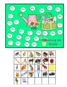 Plants Math Literacy Unit