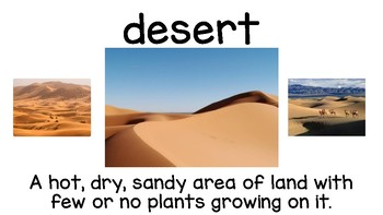 The Tiny Seed *Treasures Reading 2011* 2nd Grade Vocab Cards (Unit 5, L1)