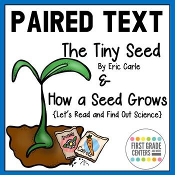 13 Magic Bean Seeds Plant Growing Message Word Seller U.S.A NO REPEATS