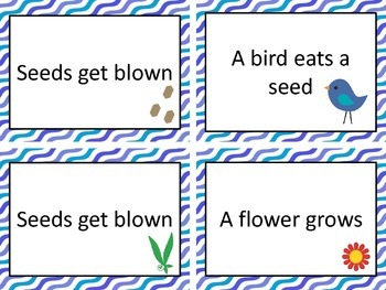 The Tiny Seed & other seed centers
