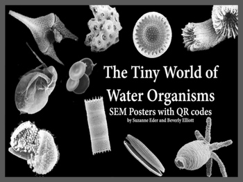The Tiny World of Water Organisms SEM Images and QR Codes