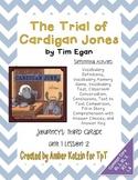 The Trial of Cardigan Jones Mini Pack 3rd Grade Journeys Unit 1, Lesson 2