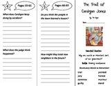 The Trial of Cardigan Jones Trifold - Journeys 3rd Gr Unit 1 Week 2 (2014, 2017)