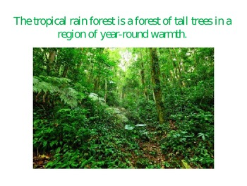 the tropical rainforest biome powerpoint presentation tpt