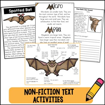 The Truth About Bats Novel Study