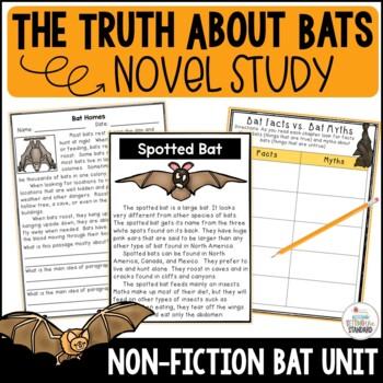Magic School Bus The Truth About Bats Teaching Resources Teachers