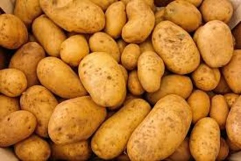 The Truth About the Potato Famine
