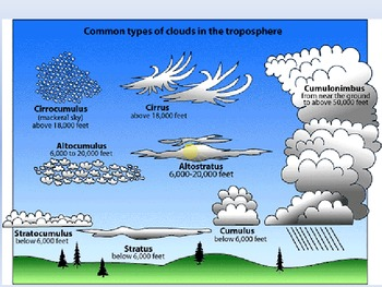 The Types of Clouds! (graphic organizer for note taking included in store too!)