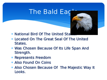 The US Symbols