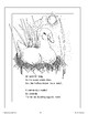 The Ugly Duckling: A Retelling