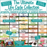 The Ultimate Life Cycle Collection  16 Different Plants and Animals