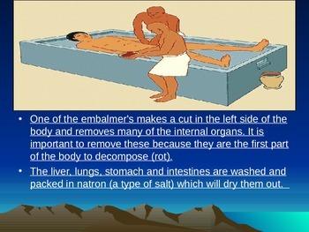The Ultimate Mummification Project