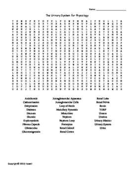 The Urinary System Vocabulary Word Search for Physiology Students