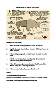 The Uses of the Buffalo in the Plains Peoples' Way of Life