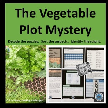 The Vacant Vegetable Plot Thinking Challenge