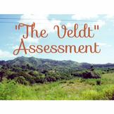 """""""The Veldt""""  Assessment; Exam"""