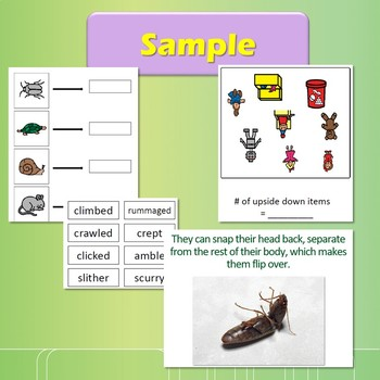 The Very Clumsy Click Beetle Literacy Unit for Special Education