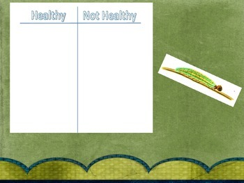 The Very Hungry Caterpillar Lesson Guide