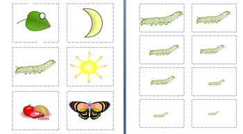 The Very Hungry Caterpillar Lesson and Extensions