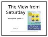 The View From Saturday (novel study guide)