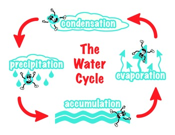 The water cycle diagram by jason bradford teachers pay teachers the water cycle diagram ccuart Choice Image