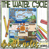 The Water Cycle Squiggle Sheets & Understanding Checkpoint  NGSS  MS-ESS2-4