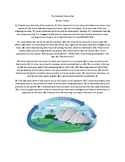 The Water Cycle Editing and Revising Passage and Questions
