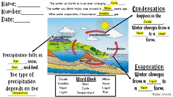 The Water Cycle (Evaporation,Condensation,Precipitation)