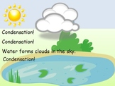 The Water Cycle: Evaporation, Condensation, Precipitation