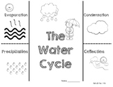 The Water Cycle Foldable