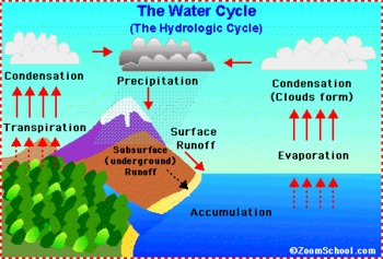 The Water Cycle - How it works!