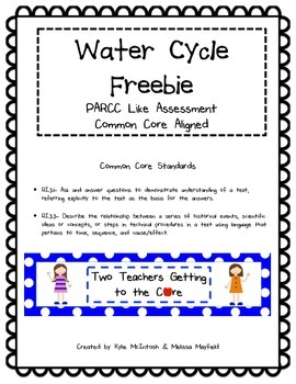 PARCC Like Assessment: The Water Cycle Freebie