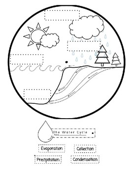 The Water Cycle Plate Activity