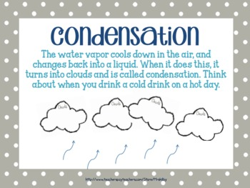 The Water Cycle PowerPoint and PDF for Primary and Intermediate Grades